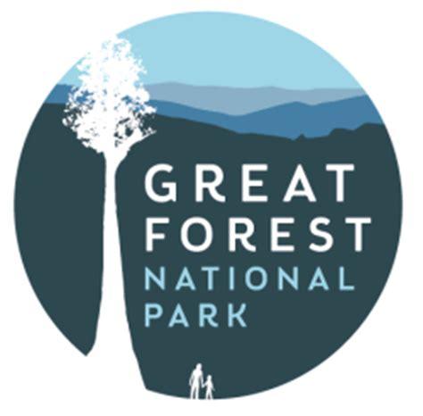Descriptive essay on a forest park